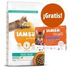 IAMS 10 kg pienso para gatos + 12 x 85 g sobres IAMS ¡gratis!