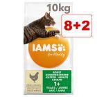 Iams kissanruoka 10 kg: 8 + 2 kg kaupan päälle!