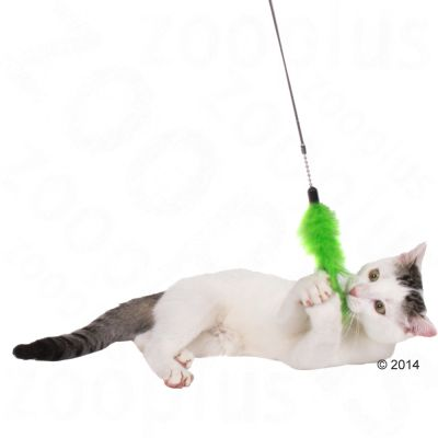 3 in 1 Cat Dangler Toy