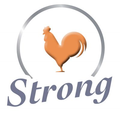 8in1 Delights Strong Ossi da masticare Pollo