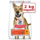 12 + 2 ingyen! 14 kg Hill's Science Plan száraz kutyatáp