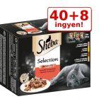 40 + 8 ingyen! 48 x 85 g Sheba