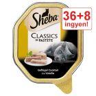 36 + 8  ingyen! 44 x 85 g Sheba tálcás