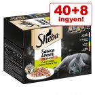 40 + 8 ingyen!  48 x 85 g Sheba variációk tálcás multipack