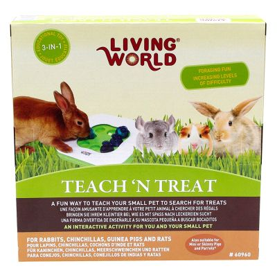 Interactief Speelgoed Living World  3 in 1