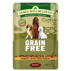 James Wellbeloved Adult Grain Free Pouches - Turkey with Vegetables