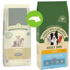 James Wellbeloved Light agneau, riz pour chien