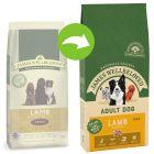James Wellbeloved Adult agneau, riz pour chien