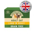 James Wellbeloved Cat Adult Pouches - Lamb