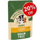 James Wellbeloved Puppy Pouches - 20% Off!*