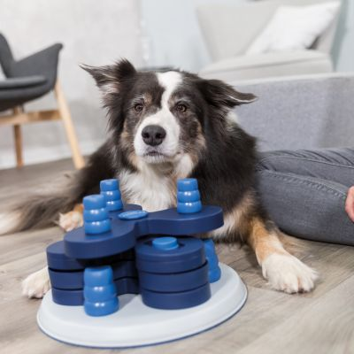 Jeu d'intelligence Trixie Dog Activity Flower Tower pour chien