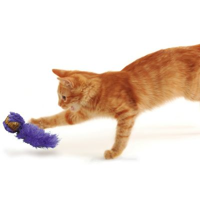 Jouet KONG Cat Cork Ball pour chat