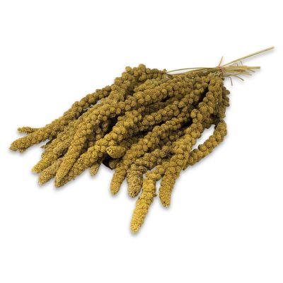 JR Birds Foxtail Millet - Yellow