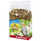 JR Birds Premium Nymfeparakitt