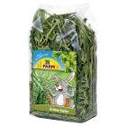 JR Farm Avoine verte pour rongeur