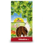 JR Farm Foxtail-Millet -tähkähirssi, punainen