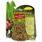 JR Farm Grainless Sino de Feno com Hibisco