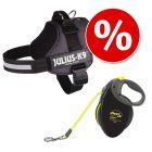 JULIUS-K9® Classic Hondentuig Antraciet + Flexi Giant L Professional 10 m