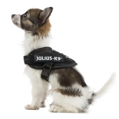 JULIUS-K9 IDC® Power Harness - Black