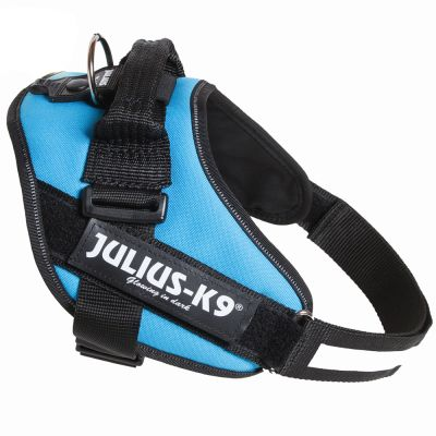Julius-K9 IDC®-Powersele aquamarine