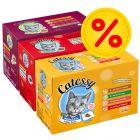 Jumbo Voordeelpakket: Catessy Hapjes Kattenvoer