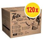 Jumbopack Felix Tendres Effilés 120 x 100 g