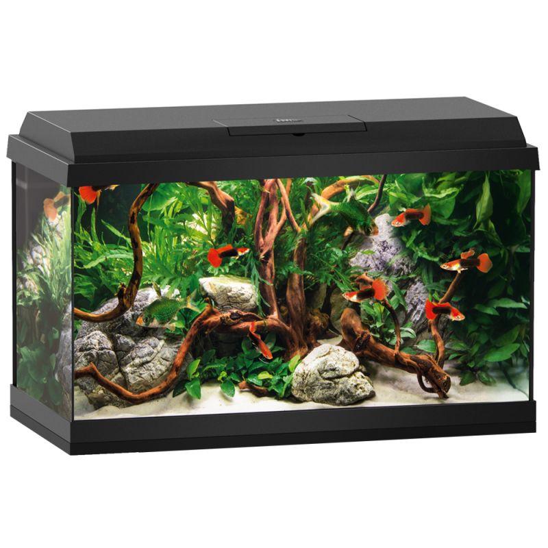 Juwel Primo 60 LED Starter Set