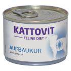 Kattovit Aufbaukur (Energie Plus) Nassfutter