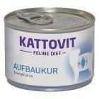 Kattovit Aufbaukur (felerősítő kúra)
