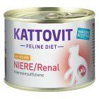 Kattovit Niere/Renal (ledvična odpoved)