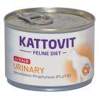 Kattovit Urinary (struvitsten), 175 g