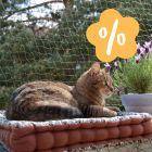 Katzenschutznetz mit und ohne Drahtverstärkung zum Sonderpreis!