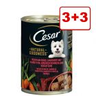 3 + 3 kaupan päälle! 6 x 400 g Cesar Natural Goodness