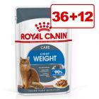 36 + 12 kaupan päälle! 48 x 85 g Royal Canin -kissanruoka