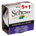 5 + 1 kaupan päälle! 6 x 85 g Schesir in Jelly