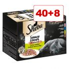 40 + 8 kaupan päälle! 48 x 85 g Sheba-rasialajitelmat