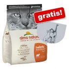 4 kg Almo Nature Holistic Adult + Sottociotola Trixie gratis!