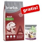 "14 kg Briantos hrană uscată + ""FitBites"" miel & cartofi, 150 g, gratis!"
