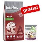 "14 kg Briantos karma dla psa + ""FitBites"", jagnięcina z ziemniakami i jabłkiem, 150 g gratis!"