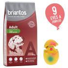 14 kg Briantos + Latex tojás kutyajáték ingyen!