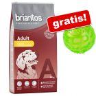 14 kg Briantos + o minge Squeaky Ball din TPR gratis!