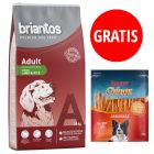 12/14 kg Briantos + Rocco Chings chrupiące filety z kurczaka, 250 g gratis!