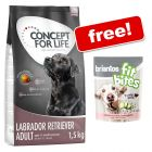 1.5kg Concept for Life Dry Dog Food + Briantos Salmon FitBites Free!*