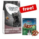 1.5kg Concept for Life Dry Dog Food + Rocco Duck Cubes Free!*