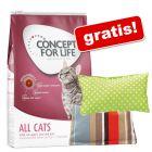 10 kg Concept for Life hrană uscată pisici + 2 pernițe Aumüller Baldini cu valeriană gratis!