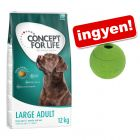 12 kg Concept for Life + Snackball kutyajáték ingyen!