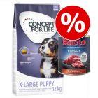 12kg Concept for Life + 6x800 g Rocco Classic marha & bárány 10% engedménnyel!