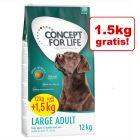 12 + 1,5 kg gratis! Concept for Life, 13,5 kg