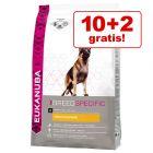 10 + 2 kg gratis! Eukanuba Adult Breed Specific 12 kg