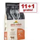 11 + 1 kg gratis! 12 kg Almo Nature hrană câini